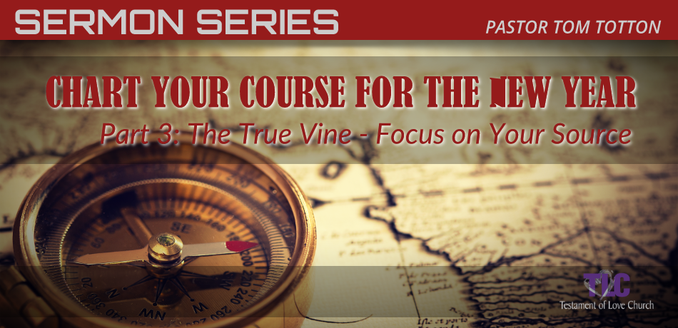 Part 3: The True Vine – Focus on Your Source
